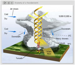 STEM-Works - Tornados & Thunderstorms Articles - Anatomy of a ...